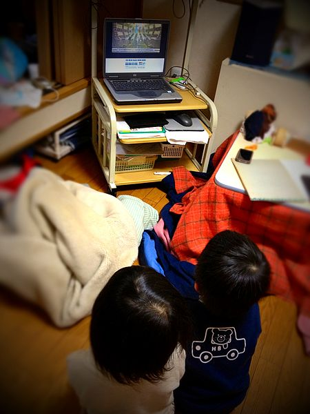 450px-Two_seiza_kids_watching_TV_NHK-kohaku_by_Note_PC_1seg.jpg
