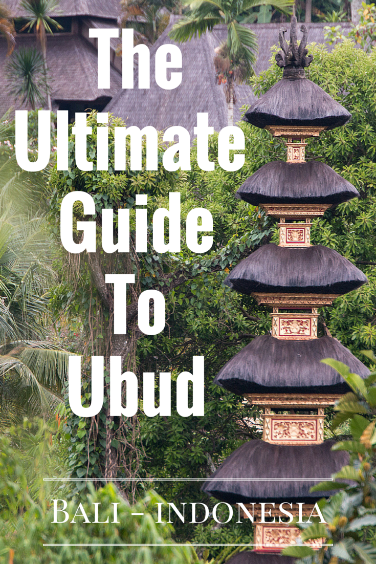 The Ultimate Guide To Paint Brush Types: The Ultimate Guide To Ubud, Bali: Villas, Scooters