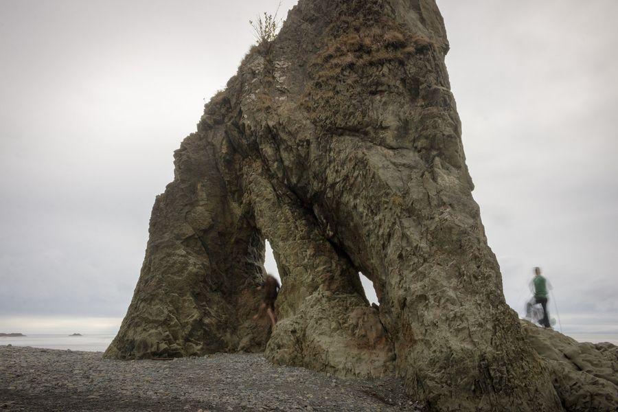 world u2019s freakiest beach   5 more reasons to visit olympic national park  washington