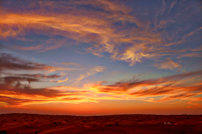 dubai_desert_safari_tour_IMG_1882_edited.jpeg