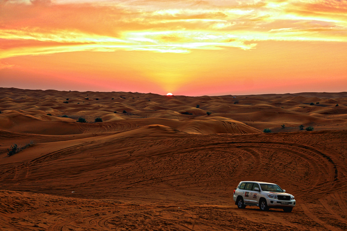 dubai_desert_safari_tour_IMG_1833_edited.jpeg