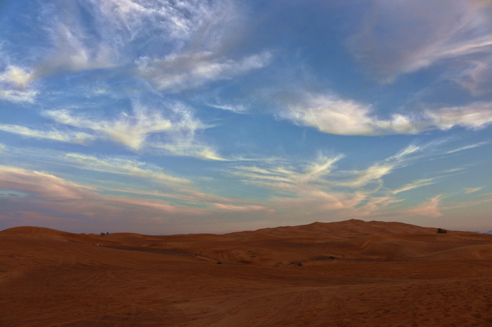 dubai_desert_safari_tour_IMG_1825_edited.jpeg