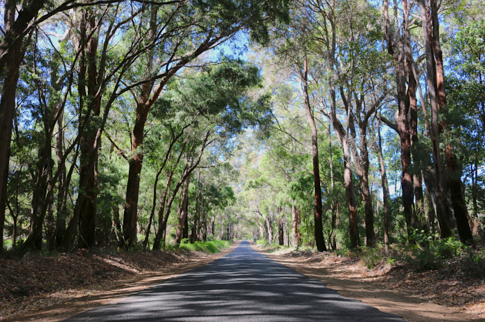 margaret_river_wine_region_IMG_4291.JPG