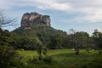 Sigiriya Rock, Sri Lanka: Attack Of The Killer Wasps