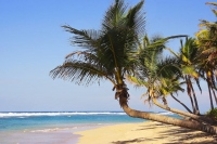 Punta Cana All-Inclusive Vacations – Luxurious Relaxation Exactly the Way You Want It