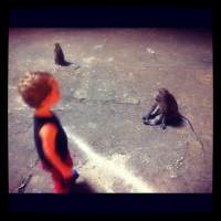 Batu Caves & Scary Monkeys