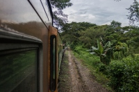 Living Life On The Edge: Hanging Out Of A Train In Sri Lanka